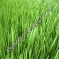 Отдушка Англия Свежескошенная трава