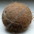 Отдушка Англия Кокосовый орех