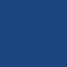 Краситель жидкий Черное море (синтетический)